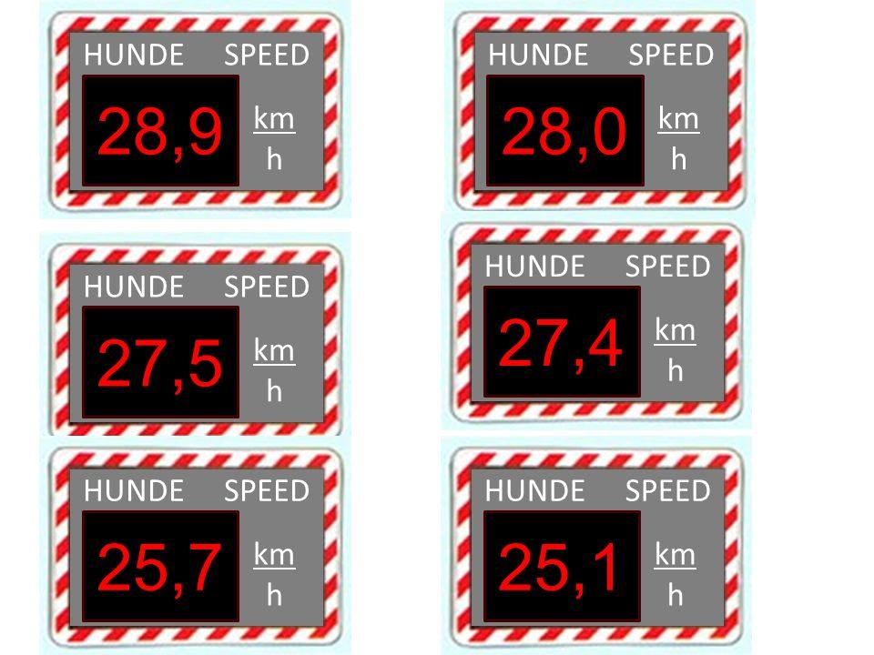 HUNDE SPEED km h 28,9 HUNDE SPEED km h 28,0 HUNDE SPEED km h 27,5 HUNDE SPEED km h 27,4 HUNDE SPEED km h 25,7 HUNDE SPEED km h 25,1