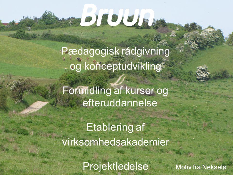 Motiv fra Nekselø Pædagogisk rådgivning og konceptudvikling Formidling af kurser og efteruddannelse Etablering af virksomhedsakademier Projektledelse