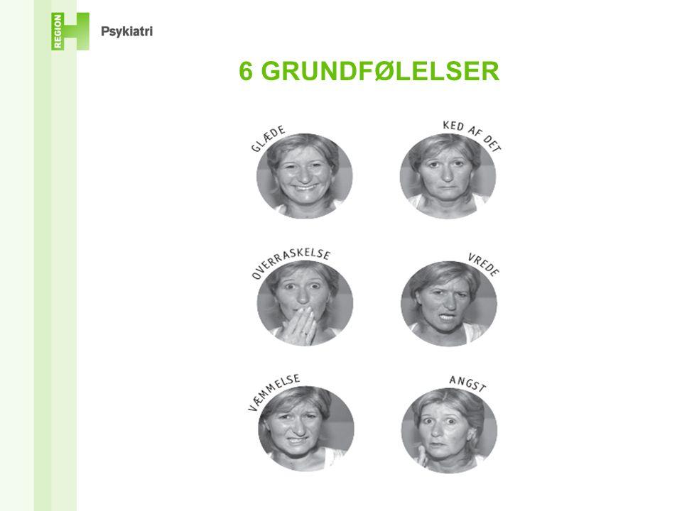 6 GRUNDFØLELSER