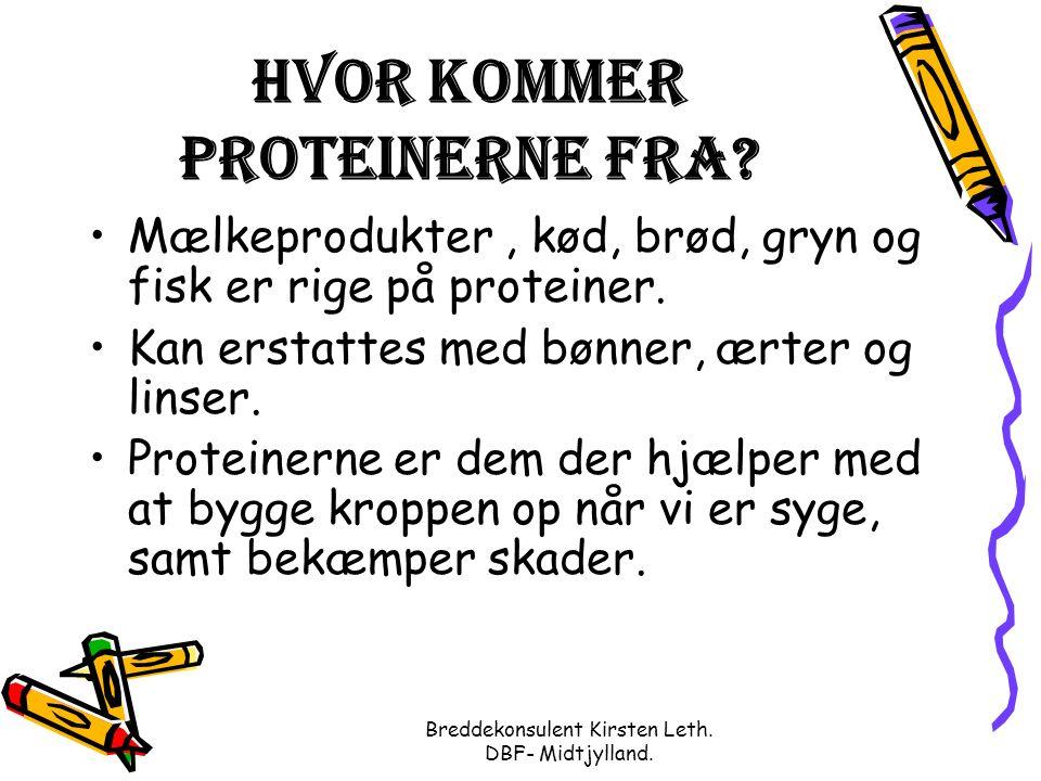 Breddekonsulent Kirsten Leth. DBF- Midtjylland. Hvor kommer proteinerne fra.