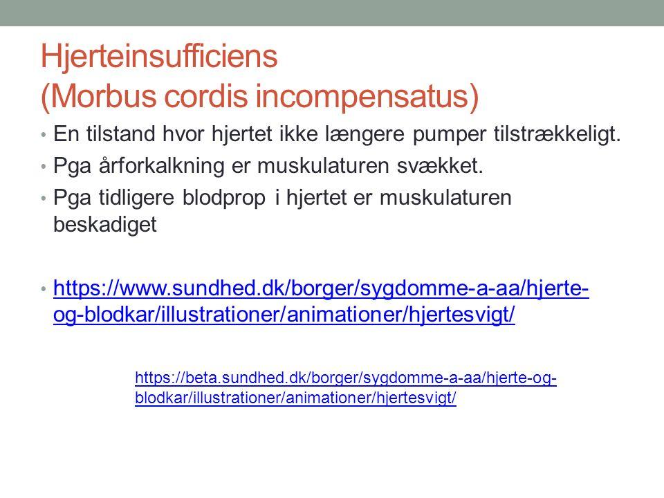 Hjerteinsufficiens (Morbus cordis incompensatus) En tilstand hvor hjertet ikke længere pumper tilstrækkeligt.
