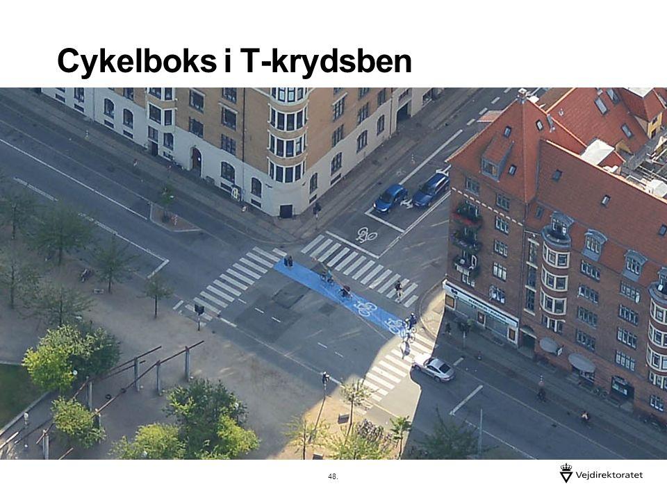 Cykelboks i T-krydsben 48.