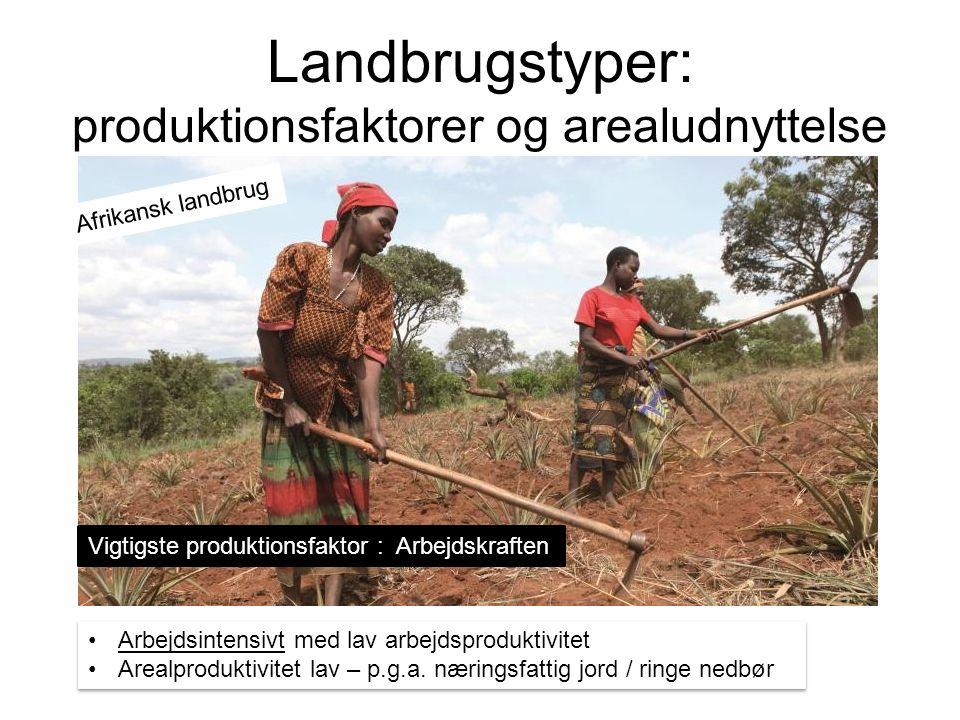 Landbrugstyper: produktionsfaktorer og arealudnyttelse Arbejdsintensivt med lav arbejdsproduktivitet Arealproduktivitet lav – p.g.a.