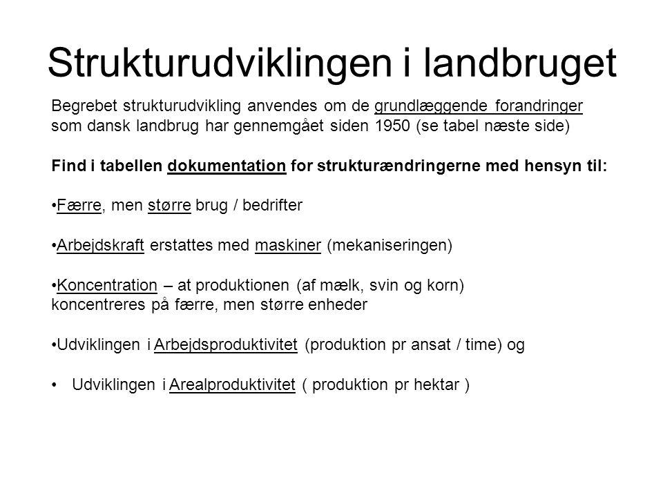 Strukturudviklingen i landbruget Begrebet strukturudvikling anvendes om de grundlæggende forandringer som dansk landbrug har gennemgået siden 1950 (se tabel næste side) Find i tabellen dokumentation for strukturændringerne med hensyn til: Færre, men større brug / bedrifter Arbejdskraft erstattes med maskiner (mekaniseringen) Koncentration – at produktionen (af mælk, svin og korn) koncentreres på færre, men større enheder Udviklingen i Arbejdsproduktivitet (produktion pr ansat / time) og Udviklingen i Arealproduktivitet ( produktion pr hektar )