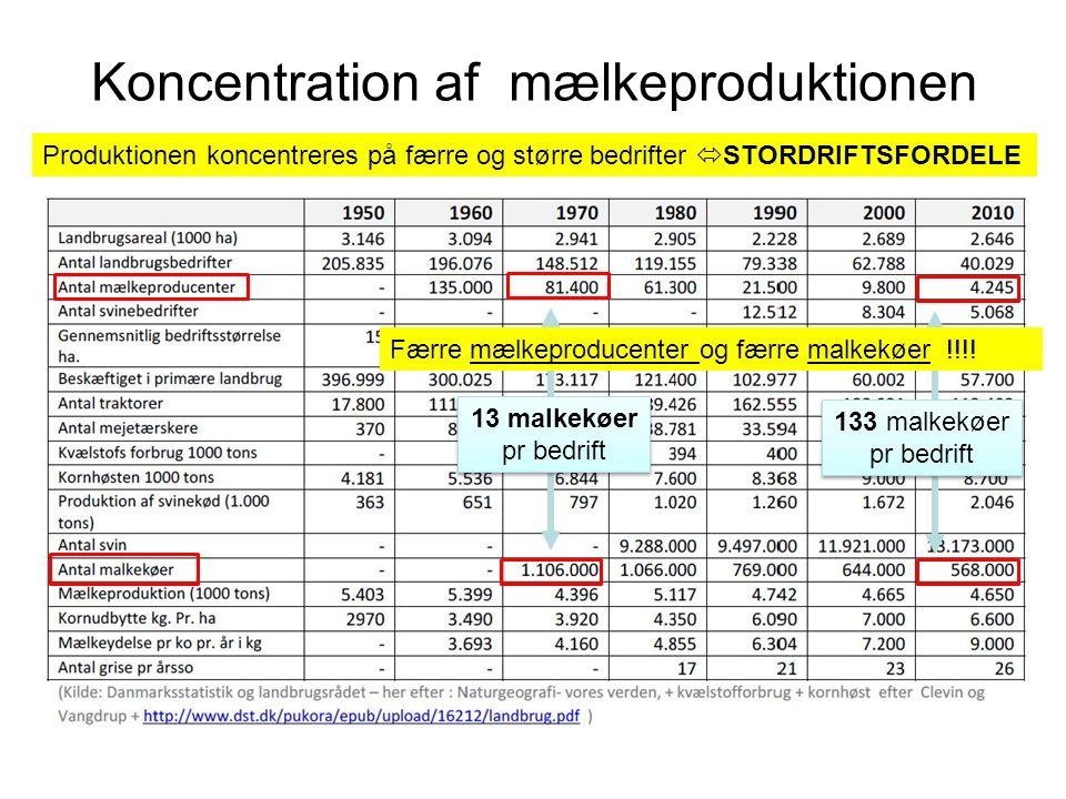 Koncentration af mælkeproduktionen 13 malkekøer pr bedrift 133 malkekøer pr bedrift Færre mælkeproducenter og færre malkekøer !!!.