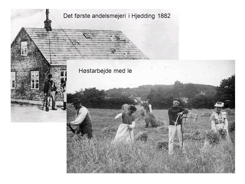 Det første andelsmejeri i Hjedding 1882 Høstarbejde med le
