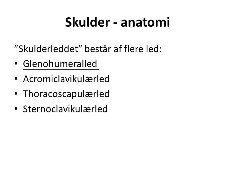 Skulder - anatomi Skulderleddet består af flere led: Glenohumeralled Acromiclavikulærled Thoracoscapulærled Sternoclavikulærled