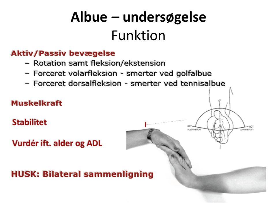 Albue – undersøgelse Funktion