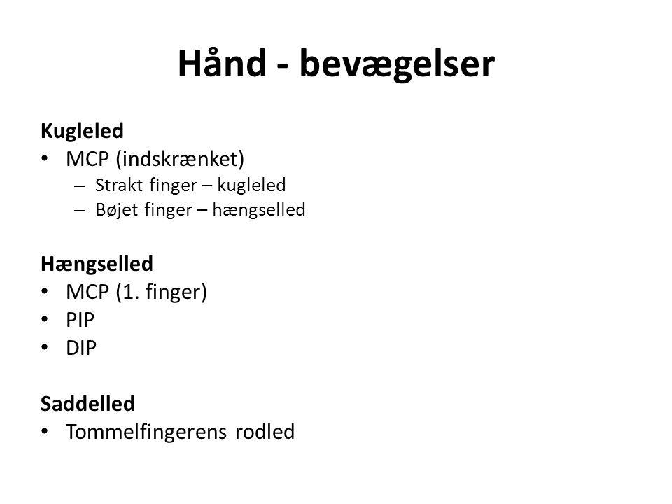 Hånd - bevægelser Kugleled MCP (indskrænket) – Strakt finger – kugleled – Bøjet finger – hængselled Hængselled MCP (1.