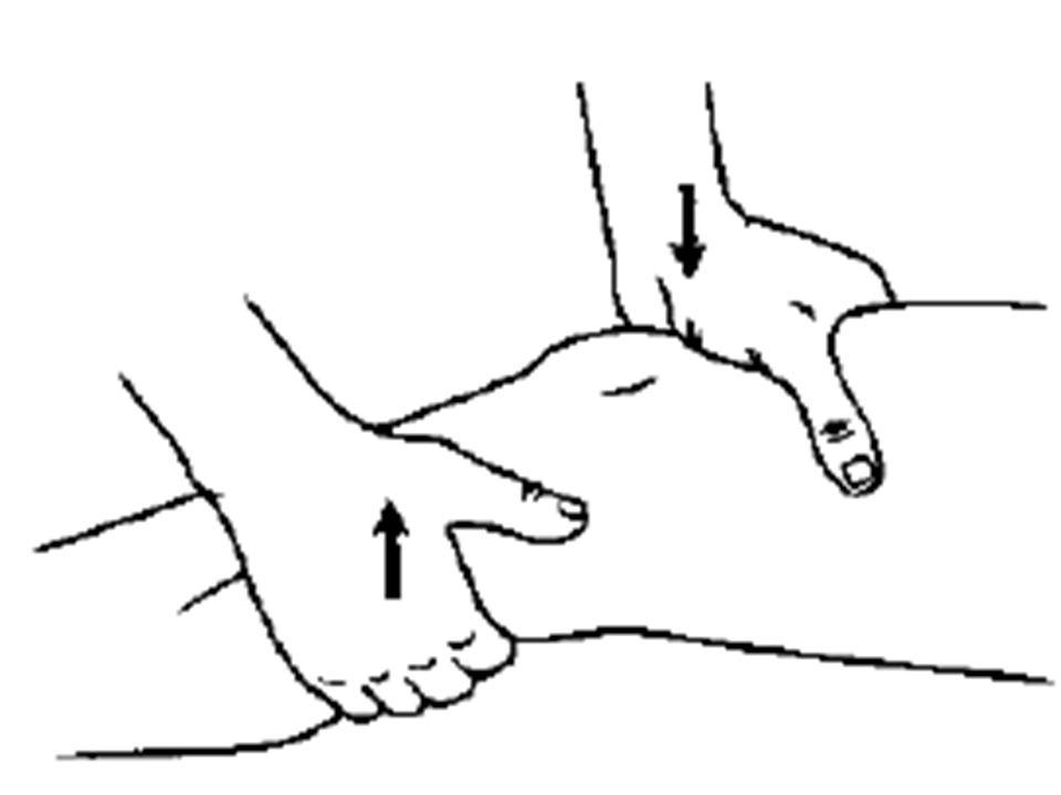 Stabilitetstest Lachmanns test – Forreste korsbånd – Flekteres 15-20 ⁰
