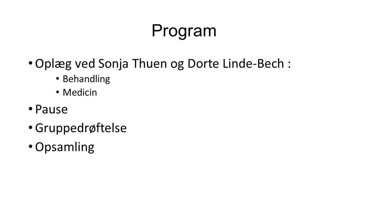 Program Oplæg ved Sonja Thuen og Dorte Linde-Bech : Behandling Medicin Pause Gruppedrøftelse Opsamling
