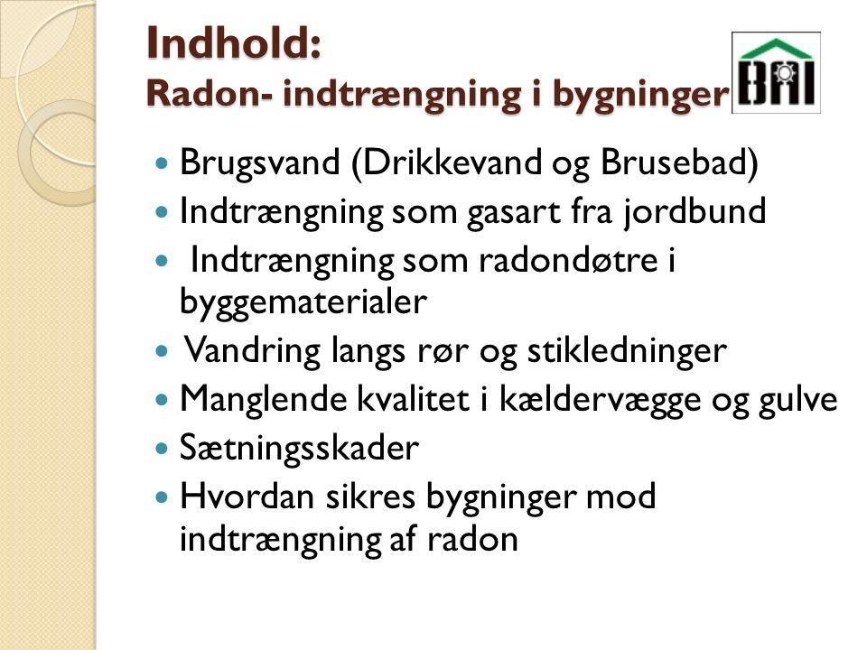 Indhold: Radon- indtrængning i bygninger Brugsvand (Drikkevand og Brusebad) Indtrængning som gasart fra jordbund Indtrængning som radondøtre i byggematerialer Vandring langs rør og stikledninger Manglende kvalitet i kældervægge og gulve Sætningsskader Hvordan sikres bygninger mod indtrængning af radon