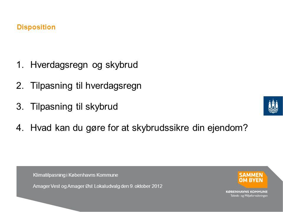 Klimatilpasning i Københavns Kommune Amager Vest og Amager Øst Lokaludvalg den 9.