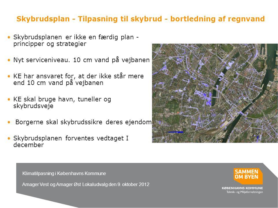 Skybrudsplan - Tilpasning til skybrud - bortledning af regnvand Skybrudsplanen er ikke en færdig plan - principper og strategier Nyt serviceniveau.