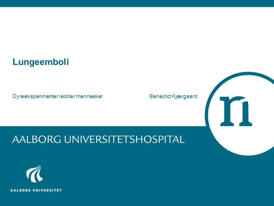 Lungeemboli Dyreeksperimenter redder menneskerBenedict Kjærgaard