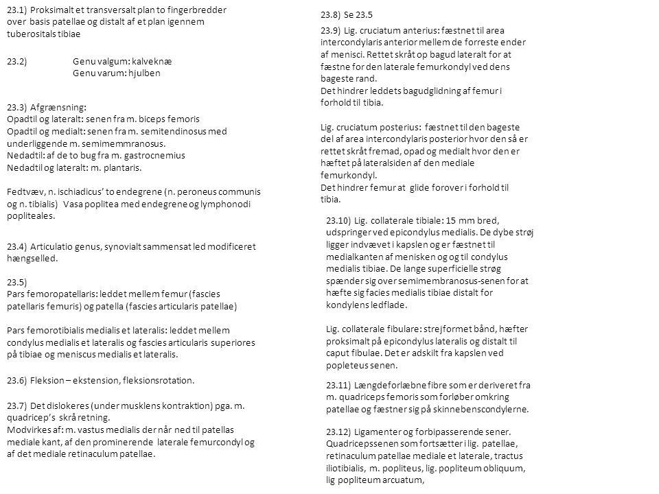 23.1) Proksimalt et transversalt plan to fingerbredder over basis patellae og distalt af et plan igennem tuberositals tibiae 23.2) Genu valgum: kalveknæ Genu varum: hjulben 23.3) Afgrænsning: Opadtil og lateralt: senen fra m.