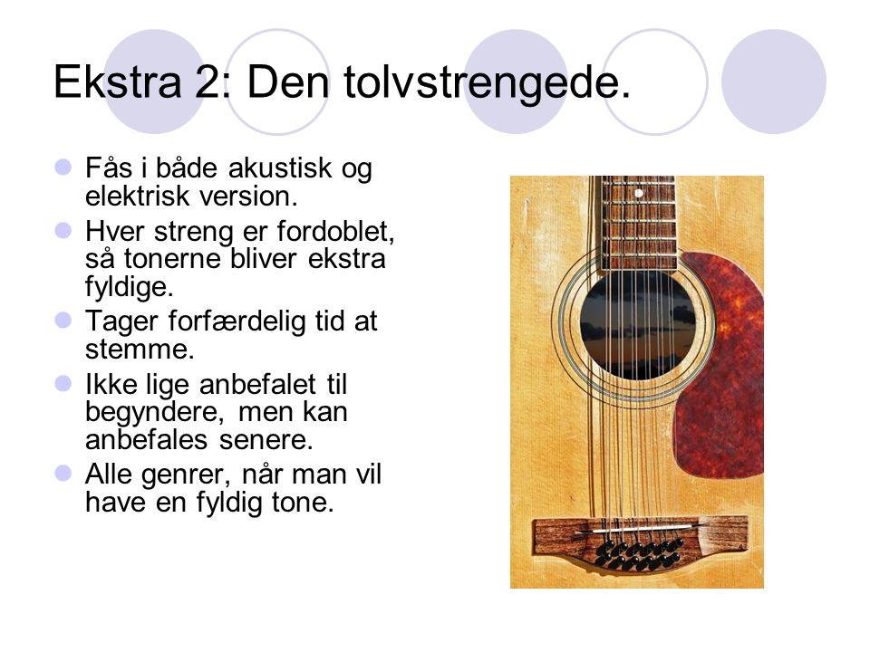 Ekstra 2: Den tolvstrengede. Fås i både akustisk og elektrisk version.