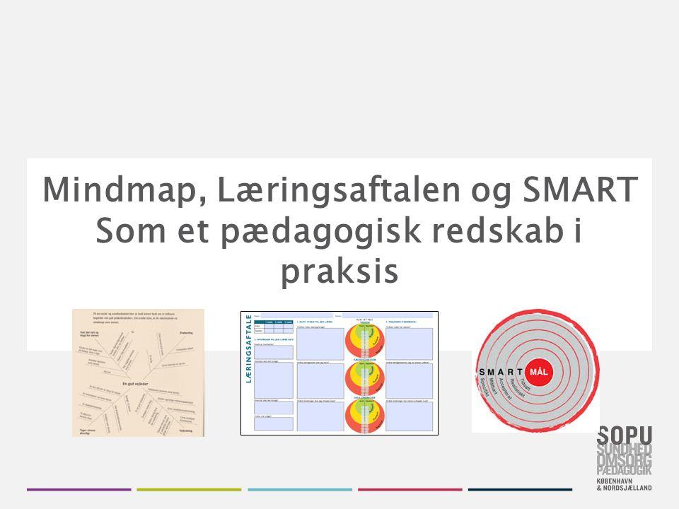 Tekstslide med bullets Brug 'Forøge / Formindske indryk' for at skifte mellem de forskellige niveauer Mindmap – rollen som praktikvejleder