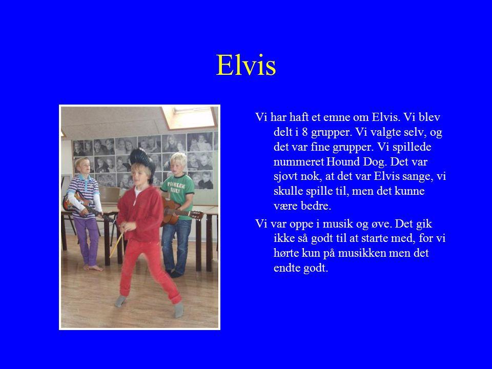 Elvis Vi har haft et emne om Elvis. Vi blev delt i 8 grupper.