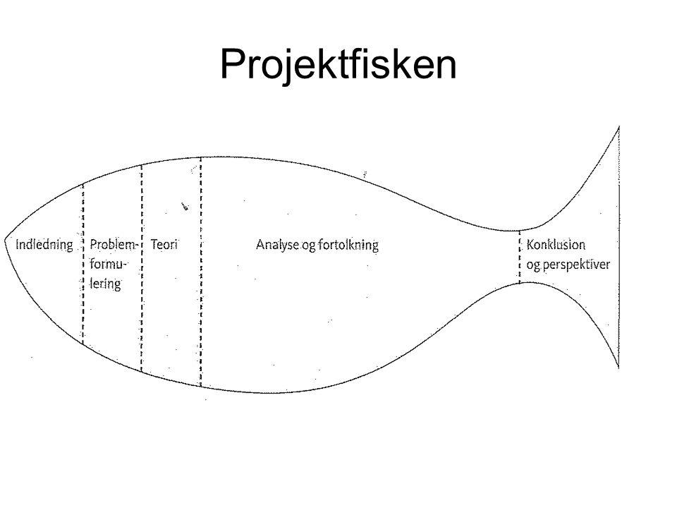 Projektfisken