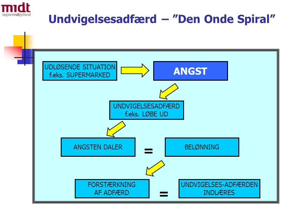 Undvigelsesadfærd – Den Onde Spiral = UDLØSENDE SITUATION f.eks.