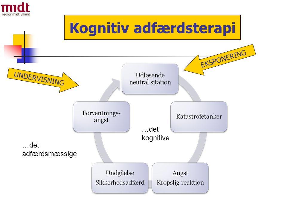 …det kognitive …det adfærdsmæssige Kognitiv adfærdsterapi UNDERVISNING EKSPONERING