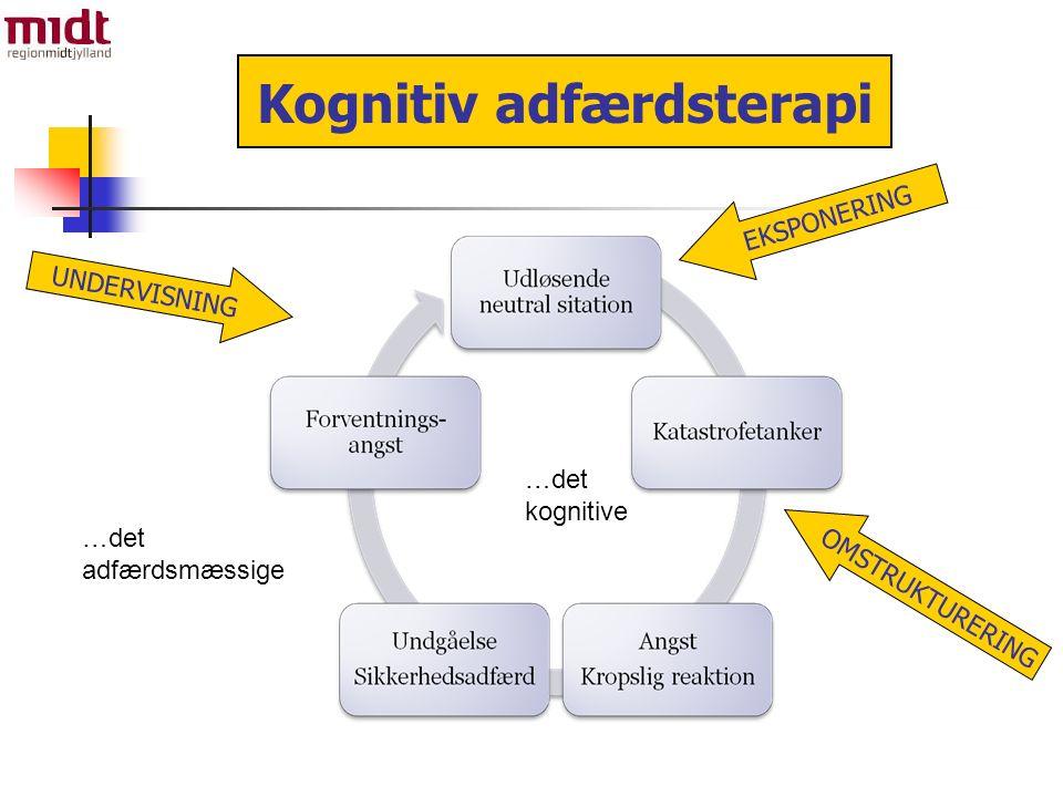 …det kognitive …det adfærdsmæssige Kognitiv adfærdsterapi UNDERVISNING EKSPONERING OMSTRUKTURERING
