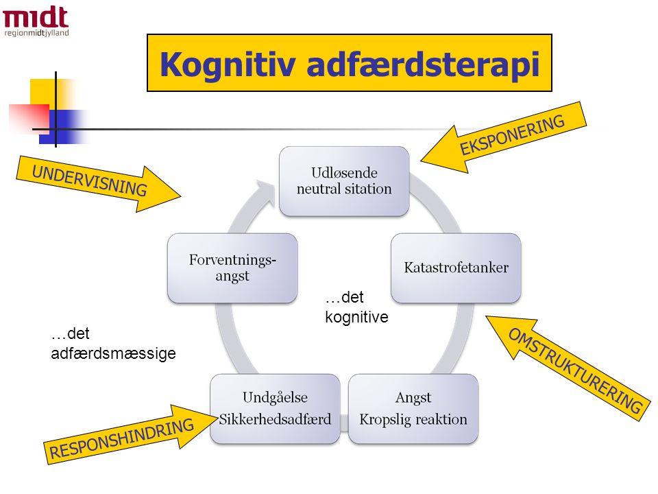 …det kognitive …det adfærdsmæssige Kognitiv adfærdsterapi UNDERVISNING EKSPONERING OMSTRUKTURERING RESPONSHINDRING