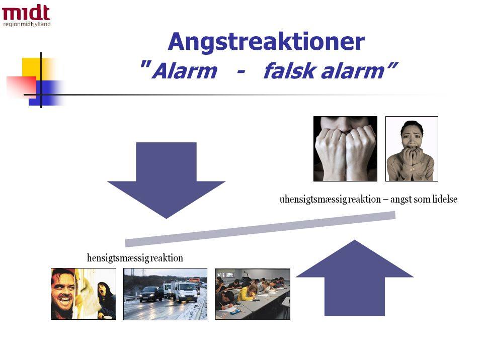 Angstreaktioner Alarm - falsk alarm