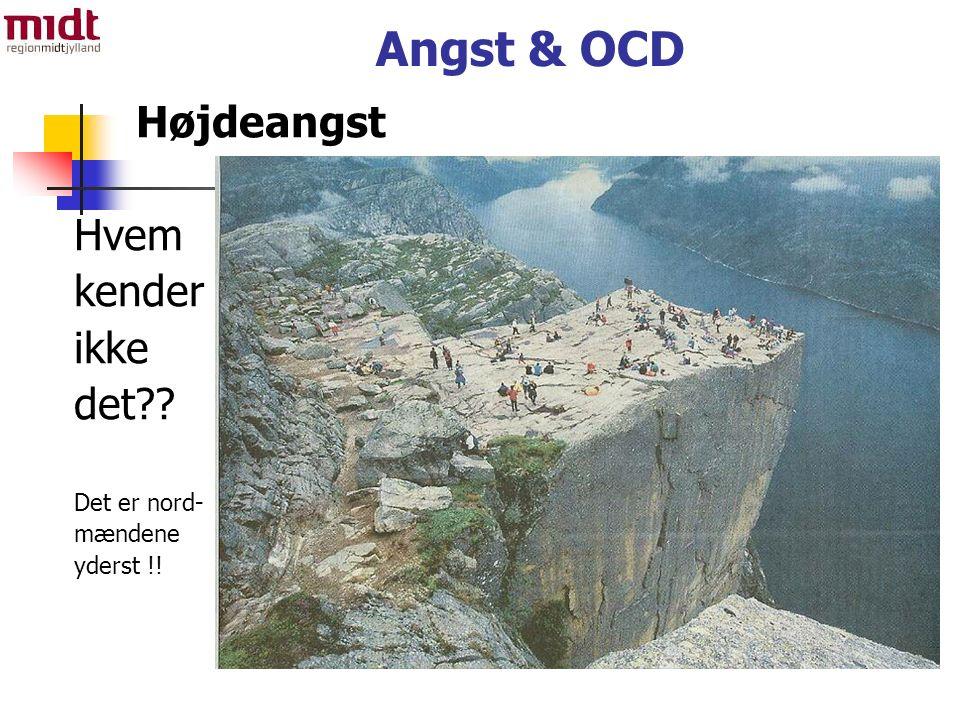 Angst & OCD Højdeangst Hvem kender ikke det Det er nord- mændene yderst !!