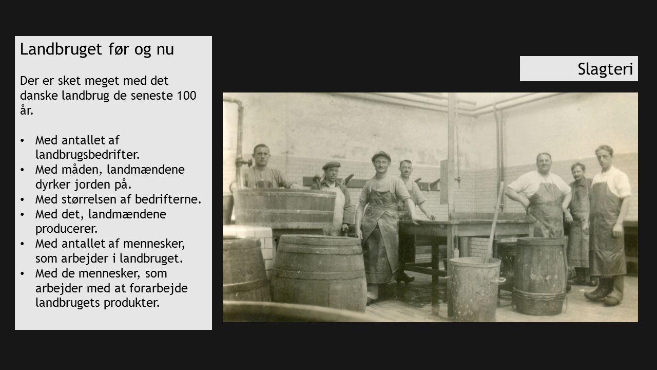 Landbruget før og nu Der er sket meget med det danske landbrug de seneste 100 år.