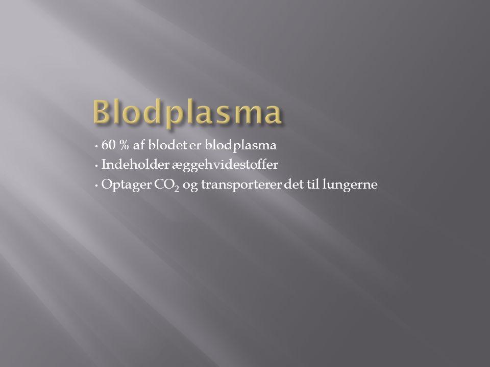 60 % af blodet er blodplasma Indeholder æggehvidestoffer Optager CO 2 og transporterer det til lungerne