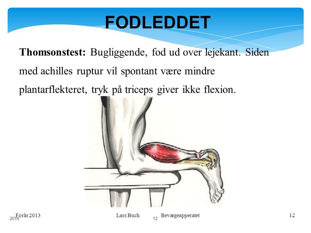 Forår 2013Lars Buch Bevægeapperatet12 FODLEDDET Thomsonstest: Bugliggende, fod ud over lejekant.