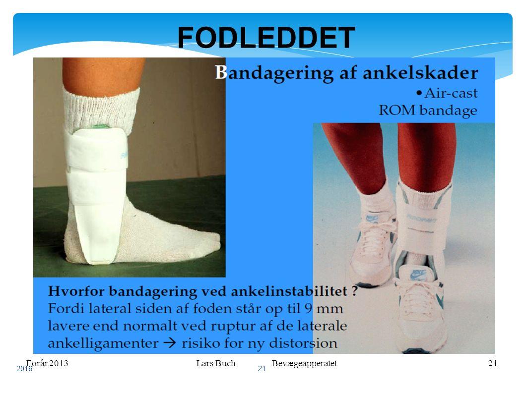Forår 2013Lars Buch Bevægeapperatet21 FODLEDDET 2016 21