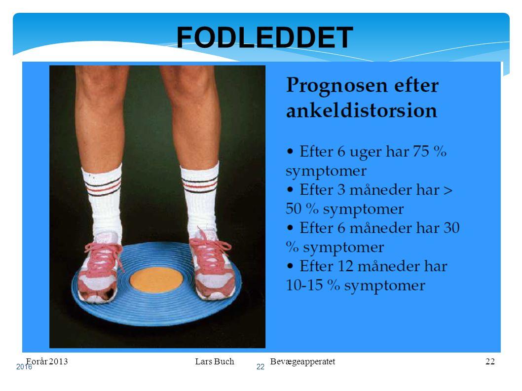 Forår 2013Lars Buch Bevægeapperatet22 FODLEDDET 2016 22