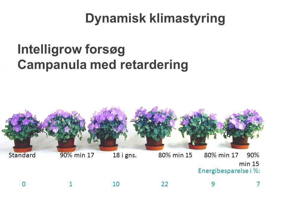 Dynamisk klimastyring Intelligrow forsøg Campanula med retardering Standard 90% min 17 18 i gns.
