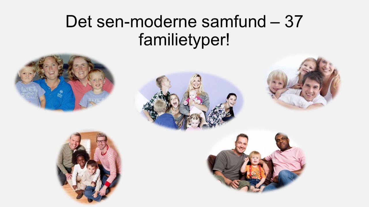 Det sen-moderne samfund – 37 familietyper!