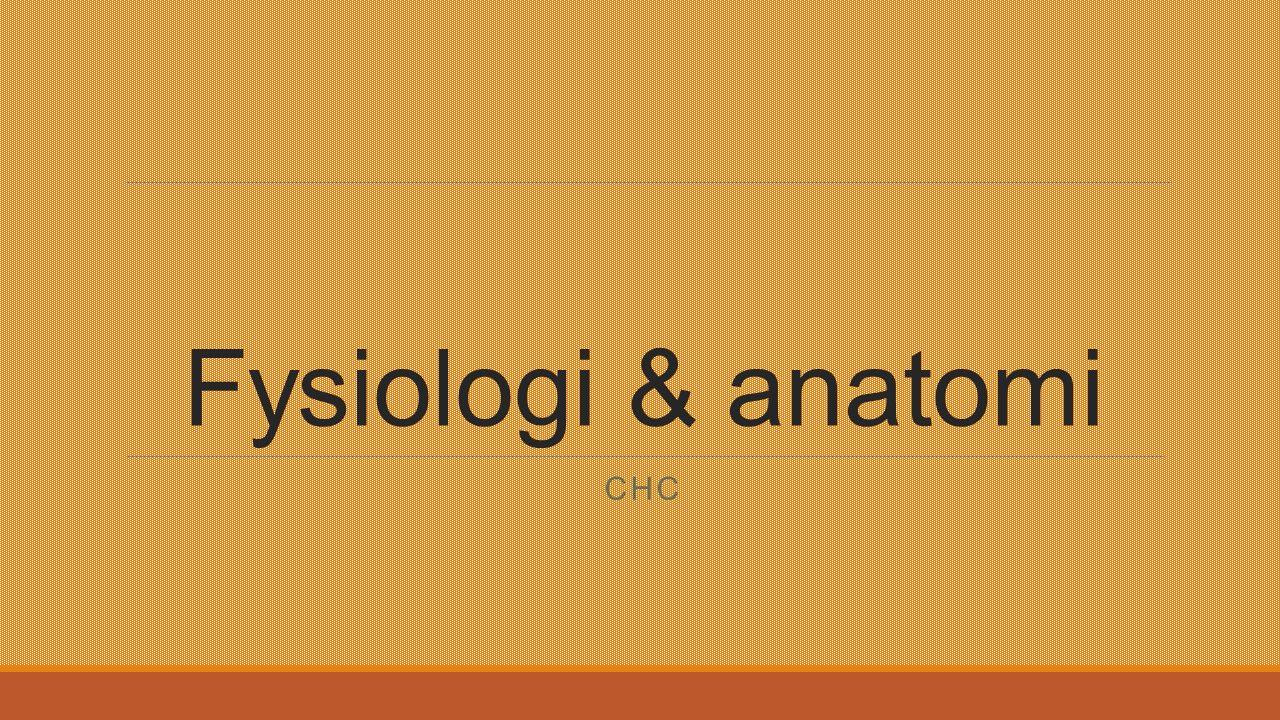 Fysiologi & anatomi CHC