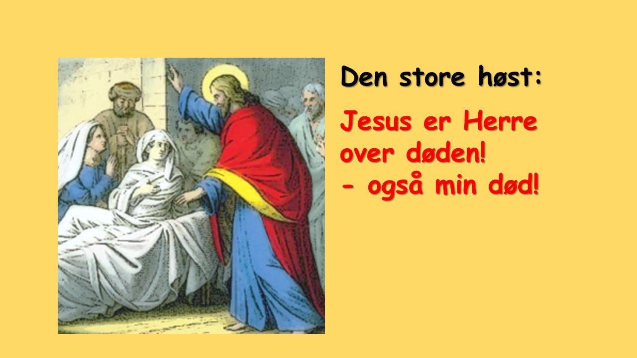 Den store høst: Jesus er Herre over døden! - også min død!