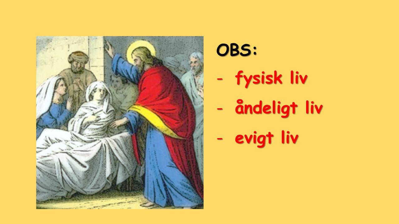 OBS: -fysisk liv -åndeligt liv -evigt liv