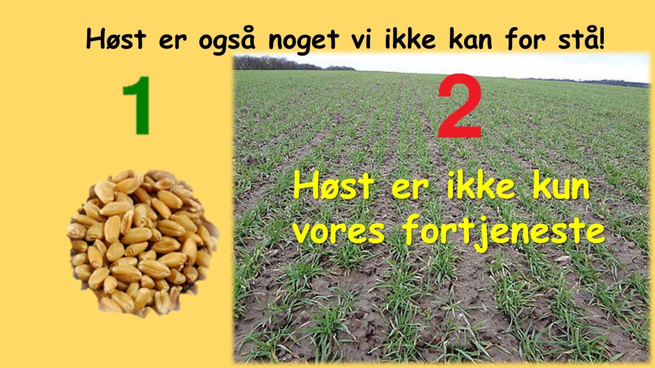 Høst er ikke kun vores fortjeneste Høst er også noget vi ikke kan for stå!