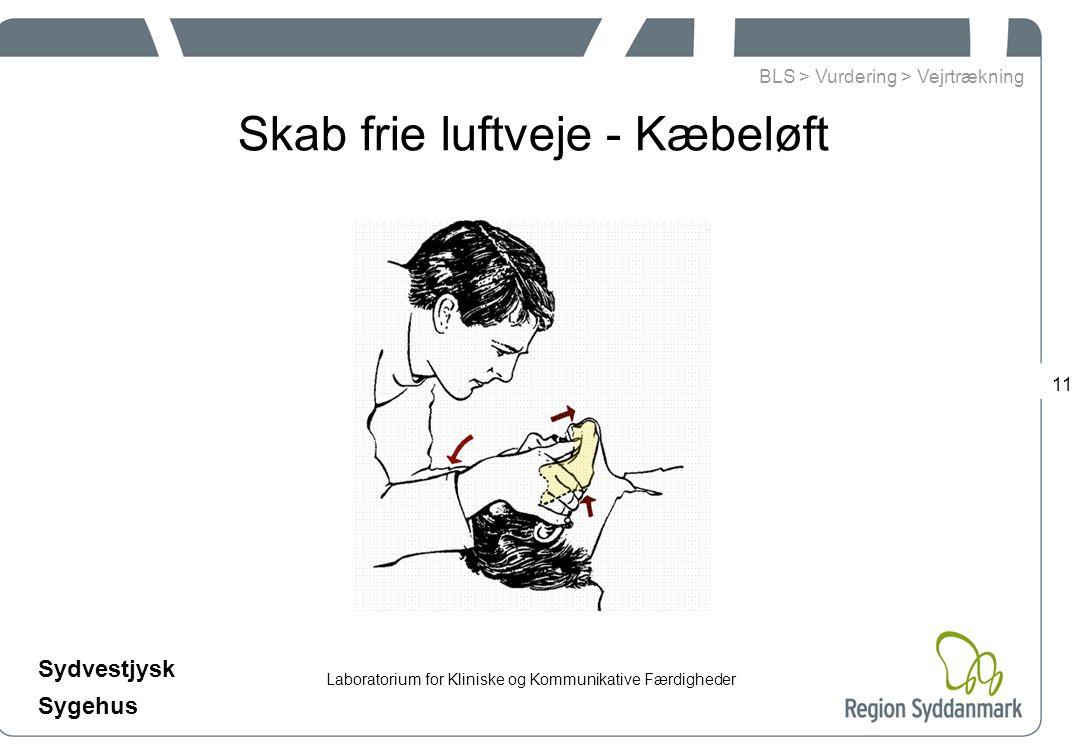 Laboratorium for Kliniske og Kommunikative Færdigheder Sydvestjysk Sygehus 11 Skab frie luftveje - Kæbeløft BLS > Vurdering > Vejrtrækning