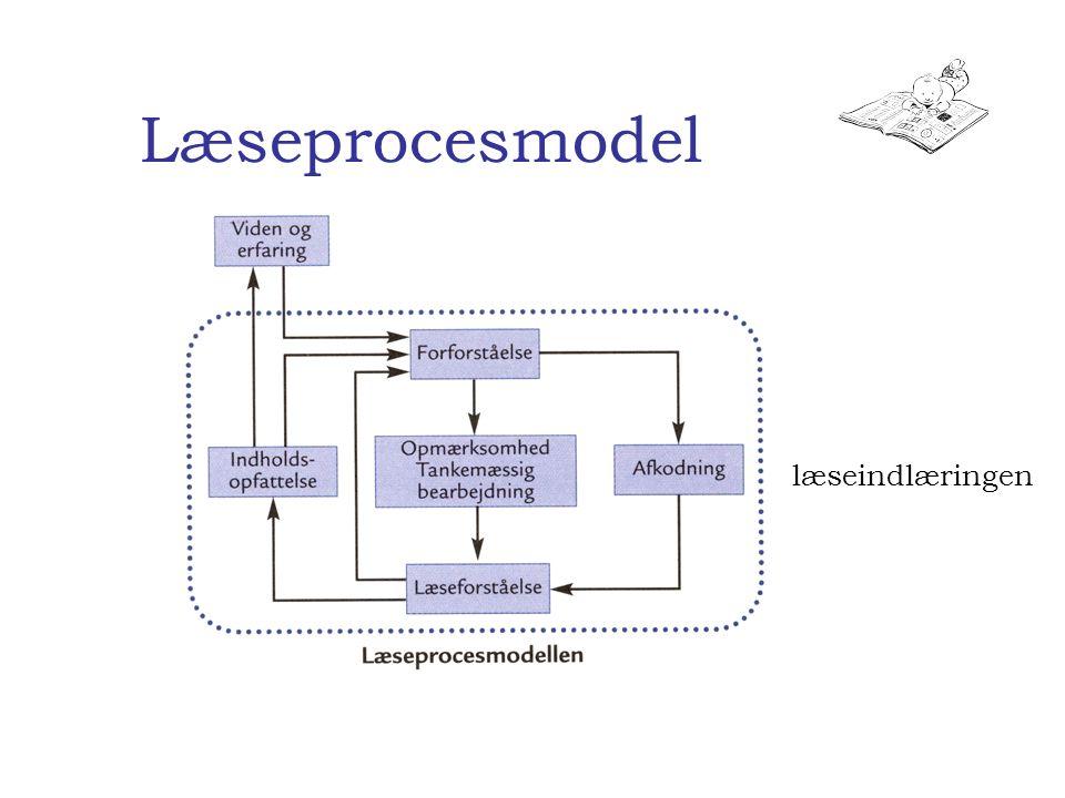 Læseprocesmodel læseindlæringen