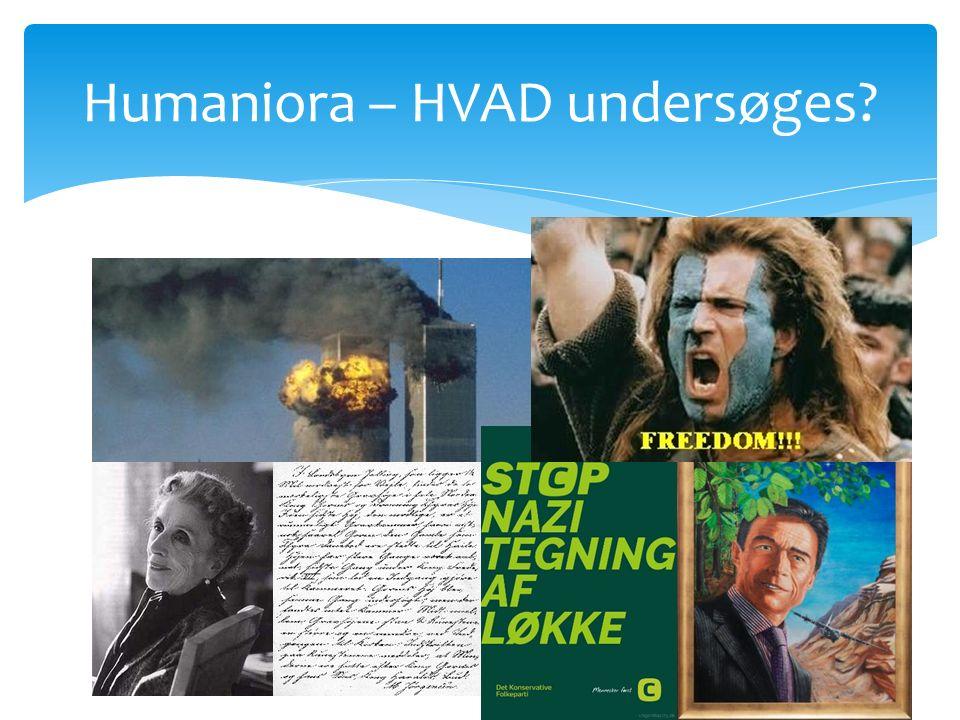Humaniora – HVAD undersøges