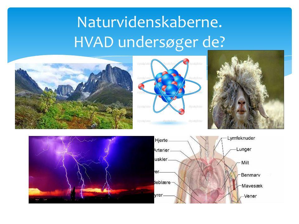 Naturvidenskaberne. HVAD undersøger de
