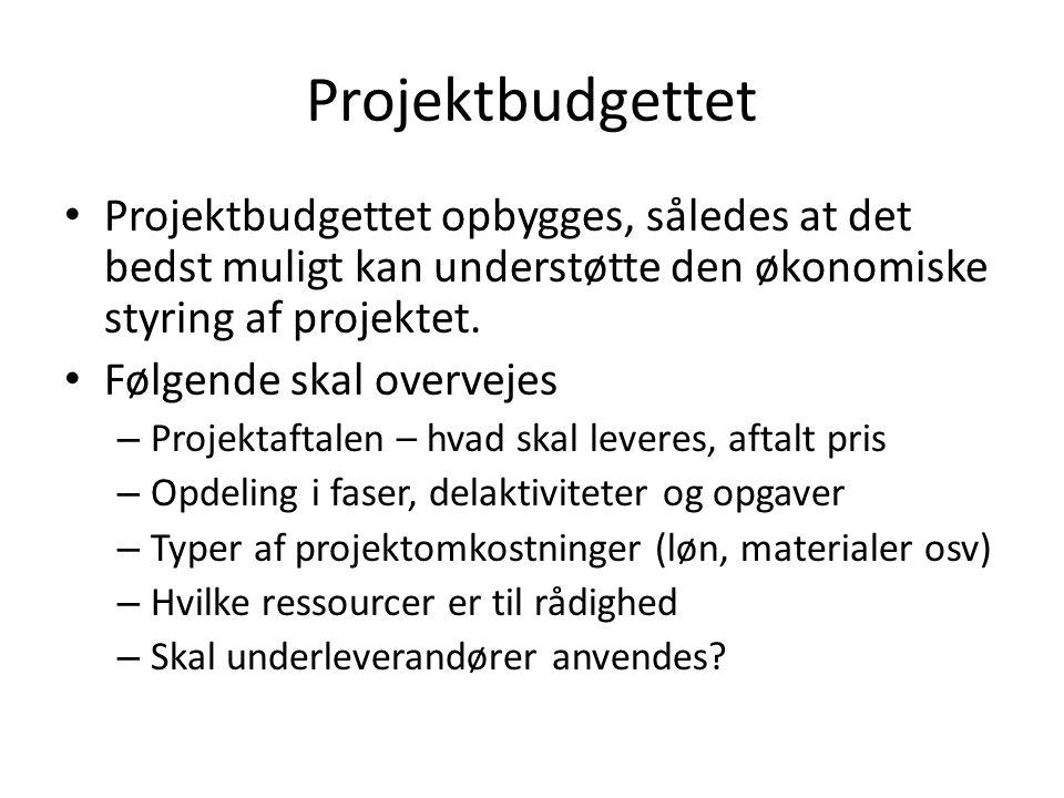 Projektbudgettet Projektbudgettet opbygges, således at det bedst muligt kan understøtte den økonomiske styring af projektet.