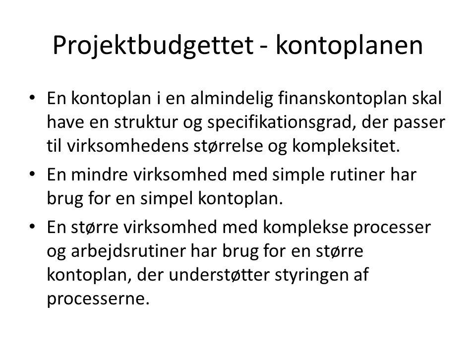 Projektbudgettet - kontoplanen En kontoplan i en almindelig finanskontoplan skal have en struktur og specifikationsgrad, der passer til virksomhedens størrelse og kompleksitet.