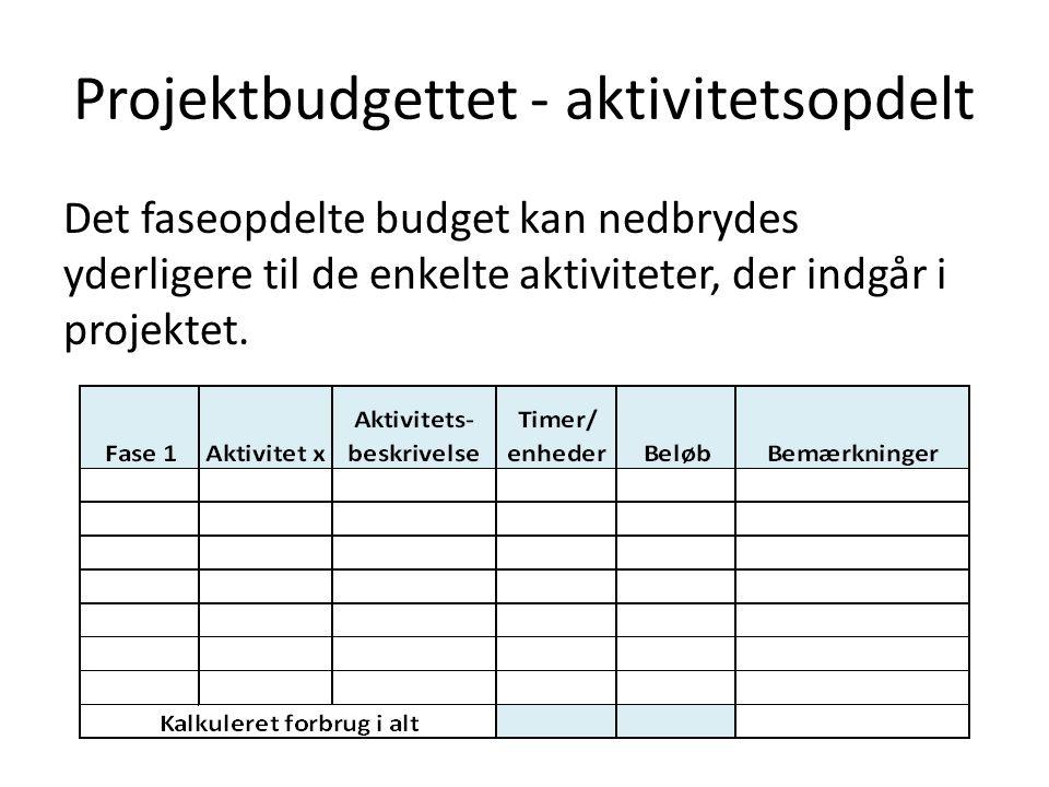 Projektbudgettet - aktivitetsopdelt Det faseopdelte budget kan nedbrydes yderligere til de enkelte aktiviteter, der indgår i projektet.