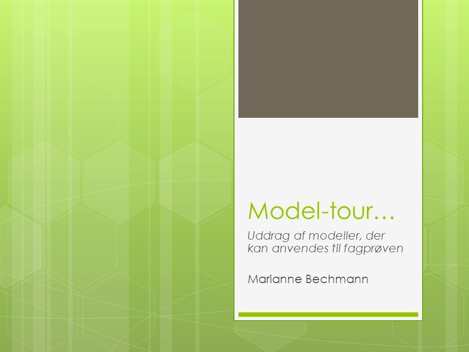 Model-tour… Uddrag af modeller, der kan anvendes til fagprøven Marianne Bechmann