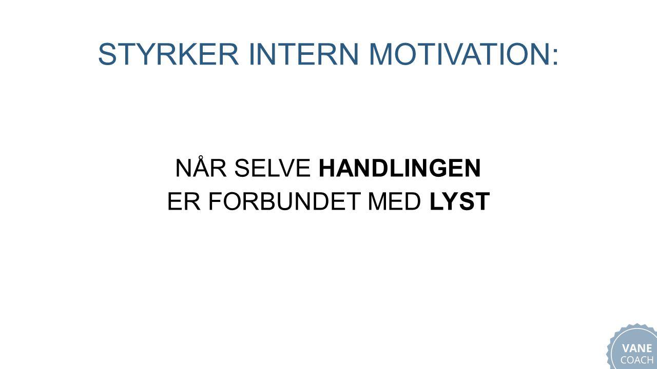 STYRKER INTERN MOTIVATION: NÅR SELVE HANDLINGEN ER FORBUNDET MED LYST